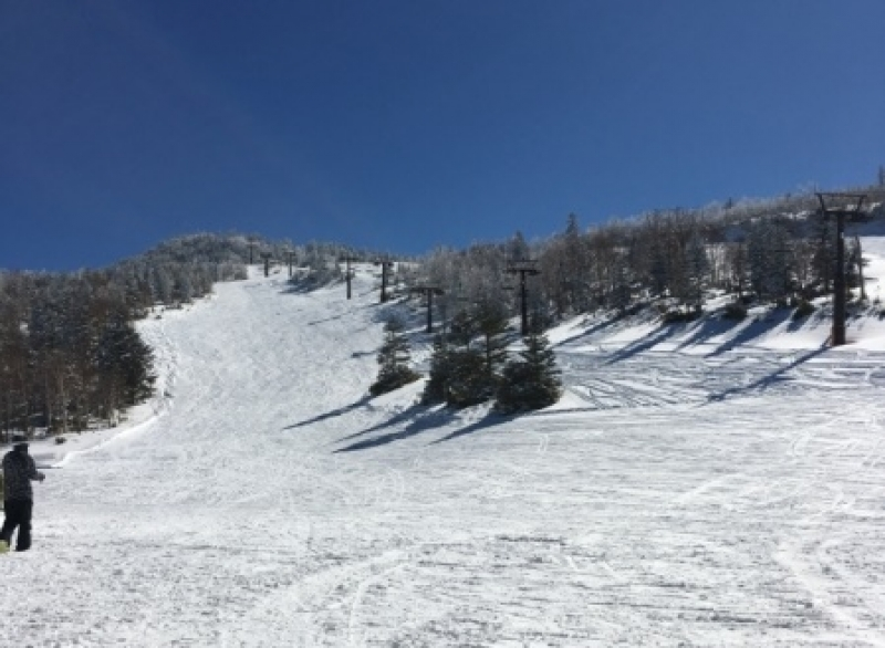 Ski Tour for 3 days to Japan Alps,  Shiga-High land or Hakuba Highland with beginners' free lesson