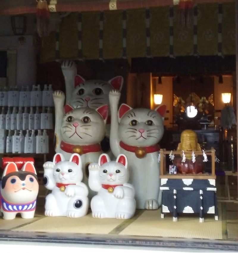 The Maneki Neko temple.