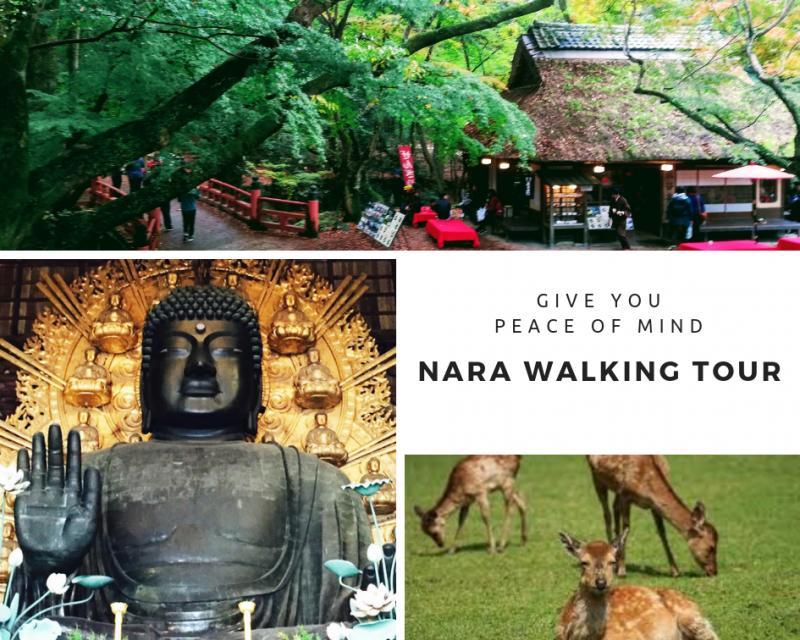 1 day walking tour in Nara
