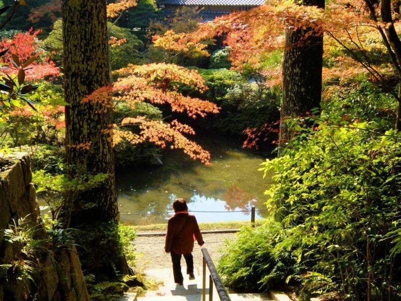 Garden of Enshouji