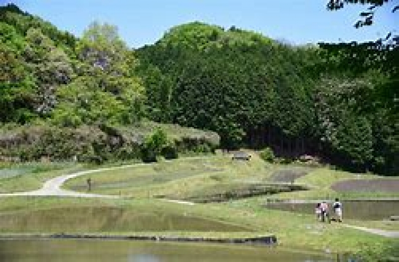 Yagu trail through agriculture communities.