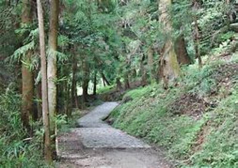 Landscape of lYamanobe no michi