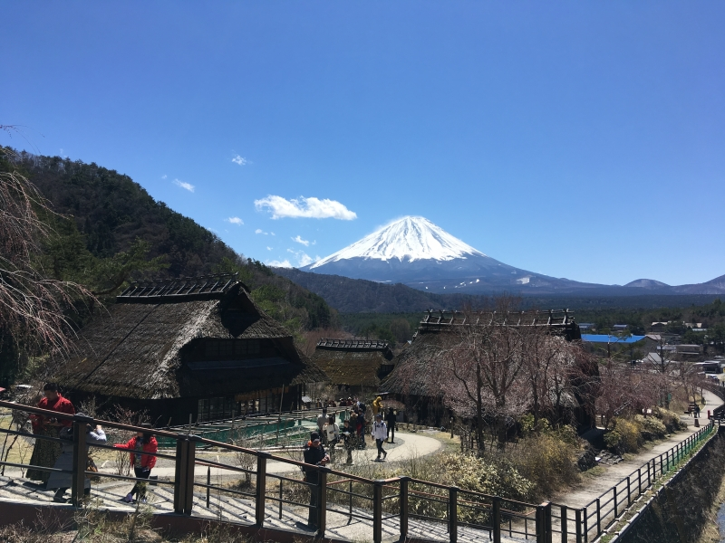 Mt. Fuji seen from the Japanese village