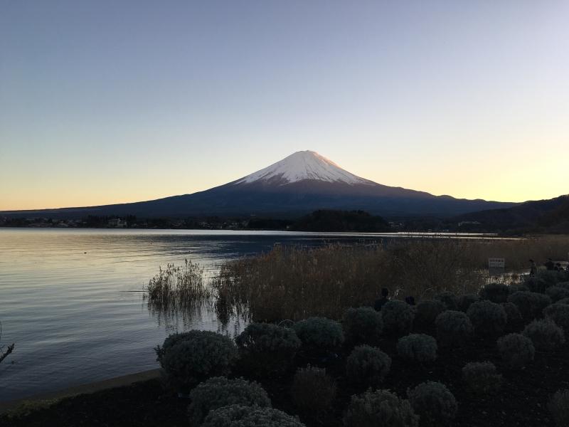 Fuji in the evening