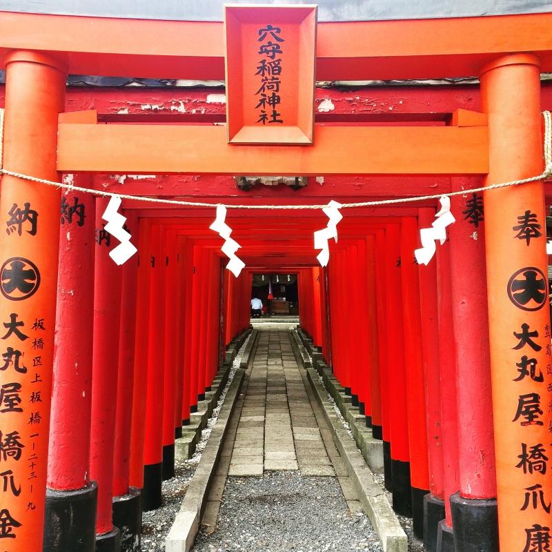 Range of Torii gate in Anamori-Inari
