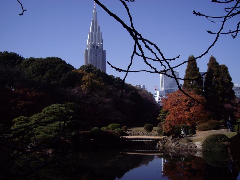 View from Shinjuku Gyoen