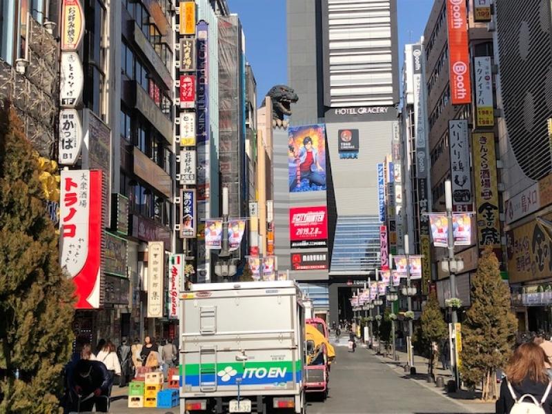 Shinjuku Kabukicho & Godzilla