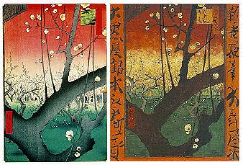 Ukiyoe influence to Vincent Gogh