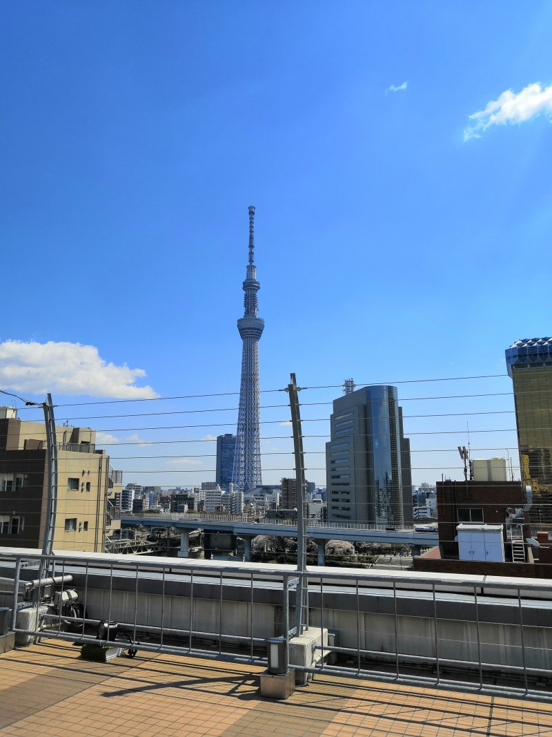 You can enjoy a great view of Tokyo Sky Tree from Asakusa.