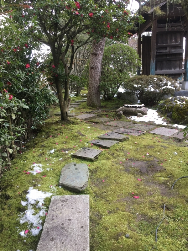 Thoughtfully placed stone steps - Rakusui-tei Museum