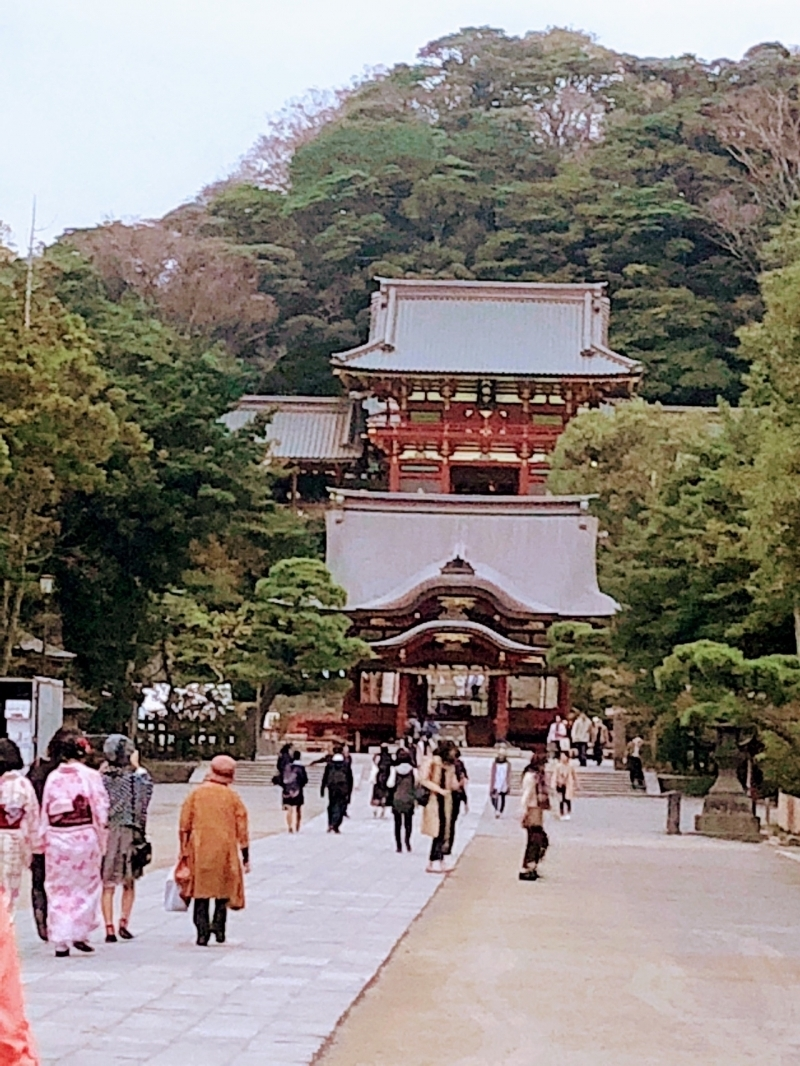 Tsurugaoka Hachiman Shrine.  It's said that about 10 million people visit this shrine annually.