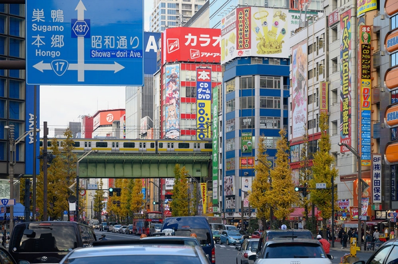 Akihabara electric town. Sub-culture (Otaku) Mecca!