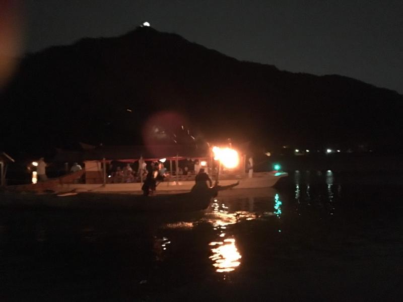 Cormorant fishing on the Nagara river tour in summer night