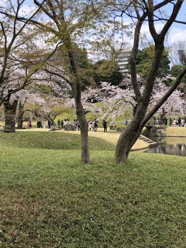 Korakuen, Japanese-style Garden, and Customized