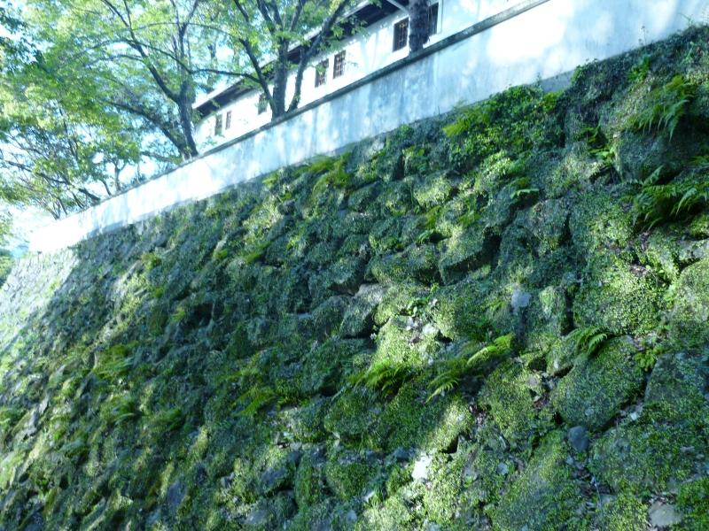 The moss-covered stone wall of Uwajima Castle