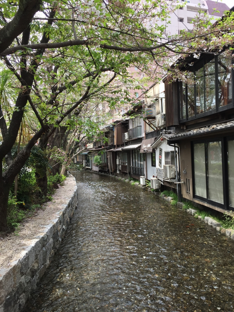 Takase-river along Kiya-machi street in Kyoto