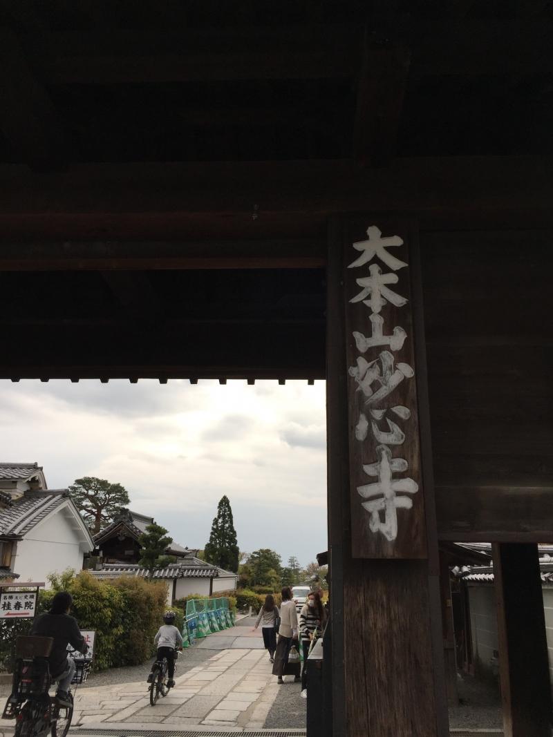 Main Gate of Myoshin-ji Temple