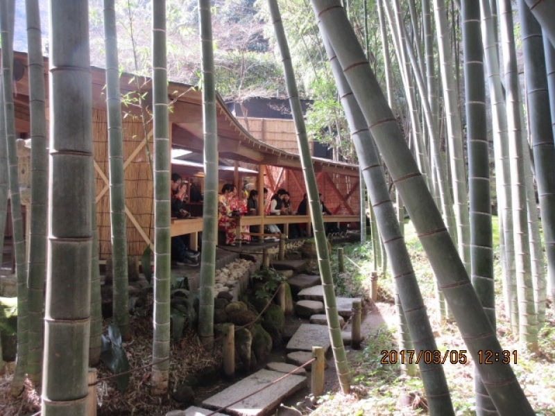 Hokokuji Temple (famous for a beautiful bamboo garden)