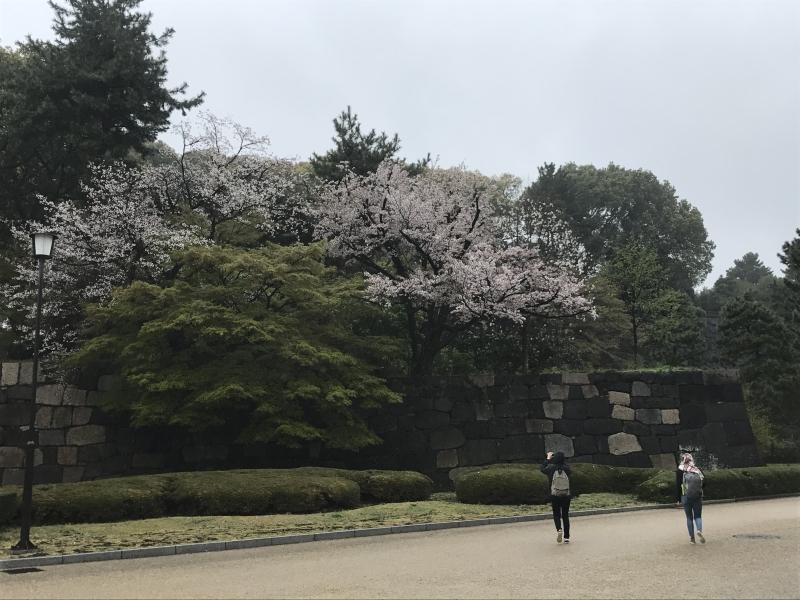 Palacio Imperial Castillo de Edo