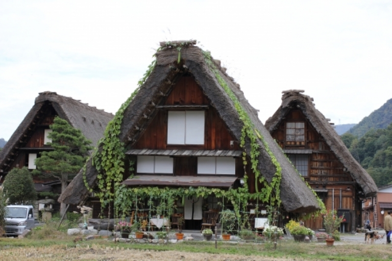 In Shirakawago, you can see traditional old houses called Gassho Zukuri. You can enter some of them.