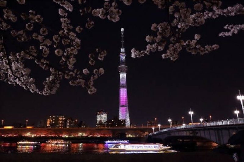 The Skytree Tower the tallest Tower in Oshiage area.
