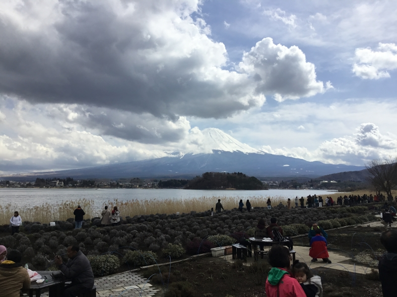 Ohishi park location is the best for you to see Mt.Fuji on the opposite side of Lake