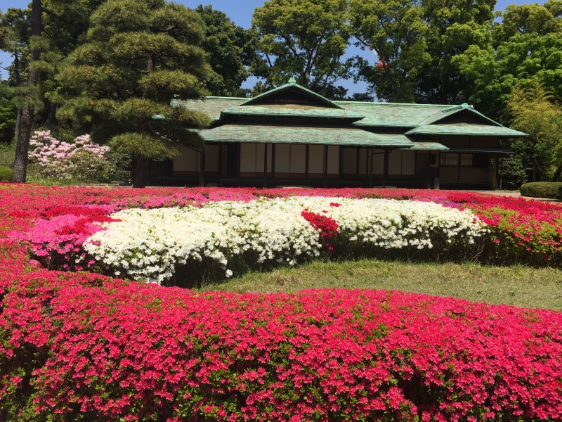 East Gardens of Imperial Palace has seasonal beauty throughout the year.