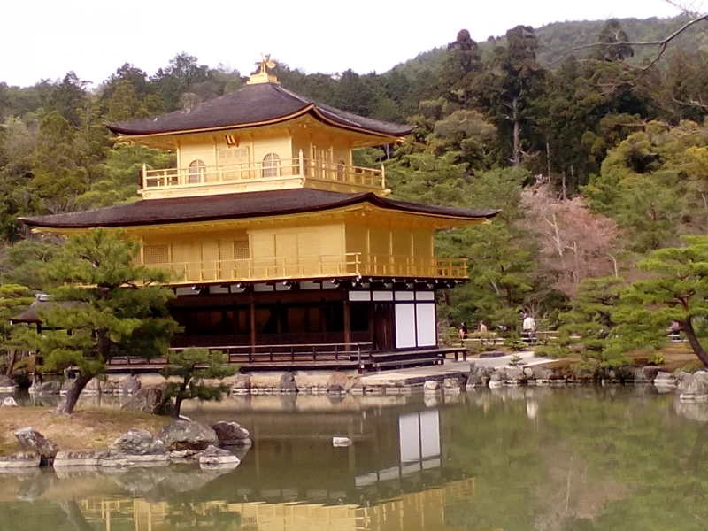The Golden Pavillion was built by 3rd shogun of Ashikaga, but it was burnt down by arson in 1950 and reconstructed in 1955 using 20 kg of gold. You can compare how it was seen before the fire with the photo that the guide shows. UNESCO World Heritage Site.