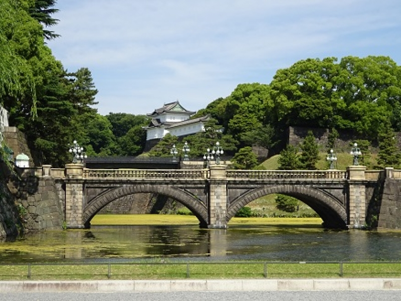 The outer garden of Imperial Palace When visitors face the palace grounds from the Outer Garden, the Imperial Palace Plaza commands the best view of the splendid Nijubashi (Double Bridge) with the Fushimiyagura (turret) in the background and the Sakurada-mon gate on the left.  Visitors can get a fine view of the Nijubashi from here.