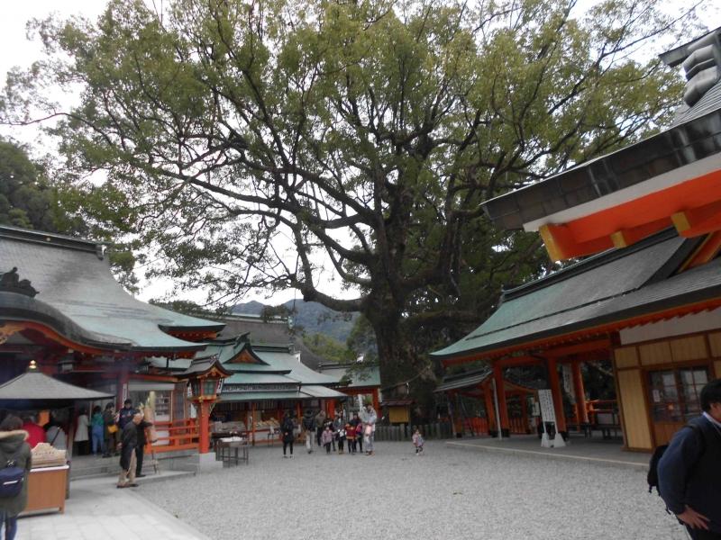 Nachi grand shrine.