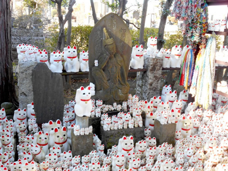 Beckoning cats in Gotokuji Temple