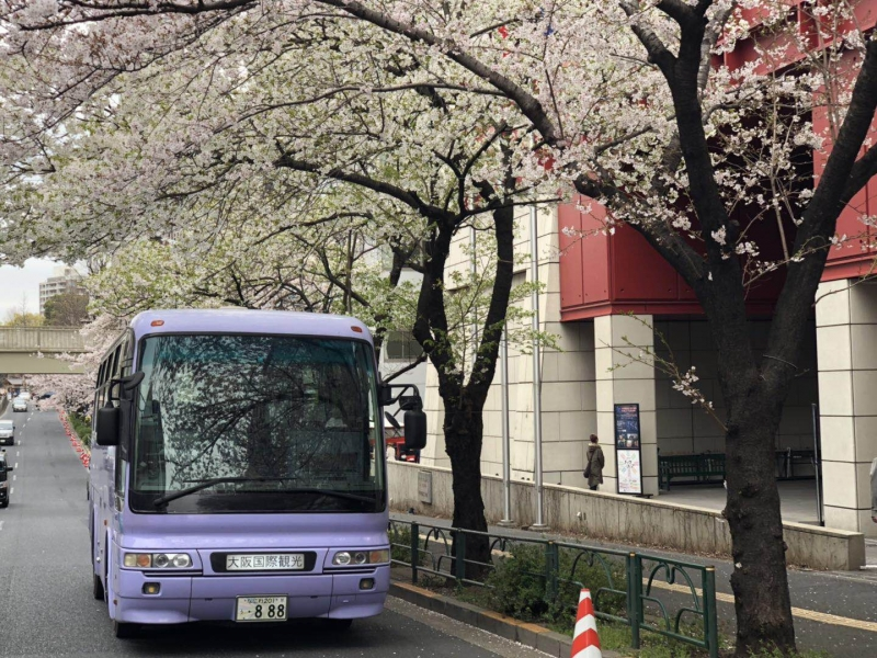 Kansai International Airport and your hotel in Osaka City by private car or bus (1-45 pax)