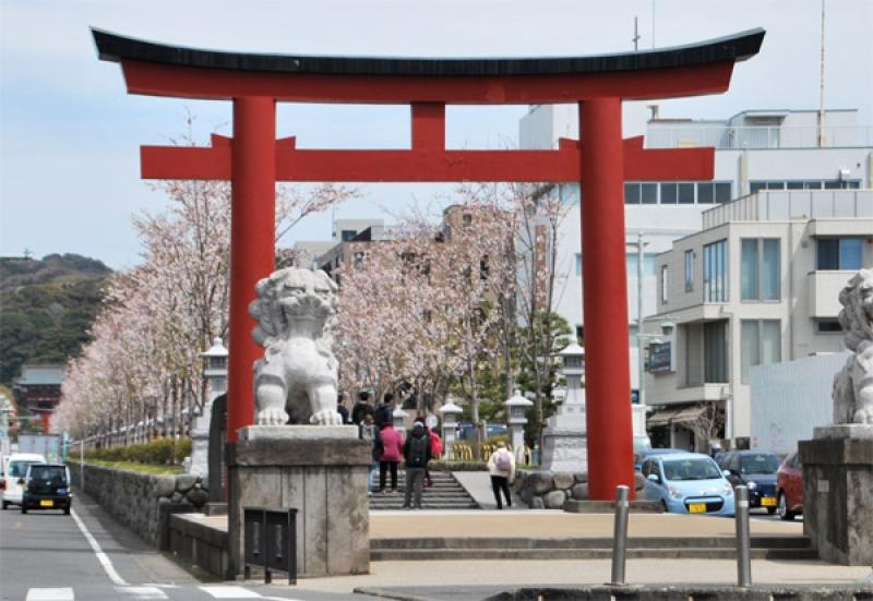 Torii Gate of Tsurugaoka-Hachimangu Shrine