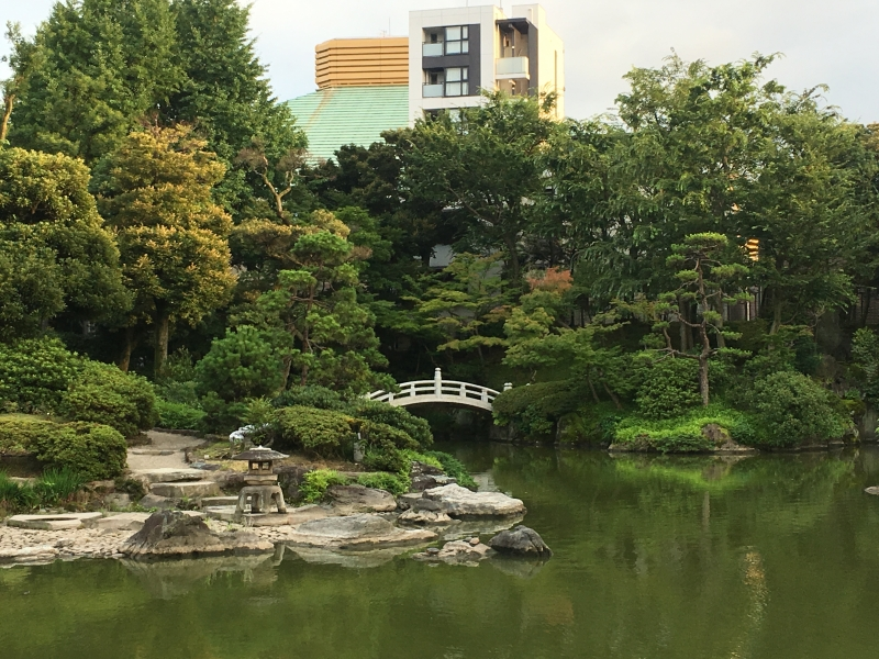 An oasis in the middle of city. You can meet wildlife in Tokyo.