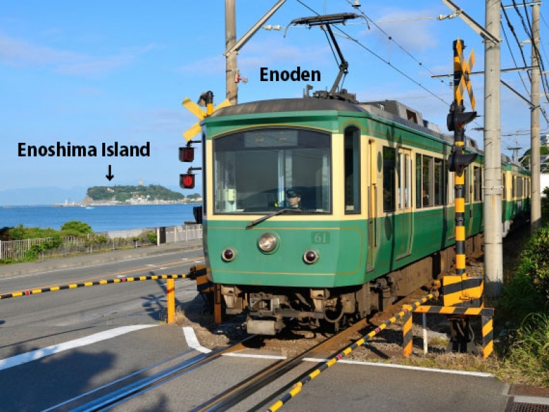 【OPTION】Enoshima Island to enjoy panoramic ocean view from Enoshima Sea Candle, lighthouse observation tower.