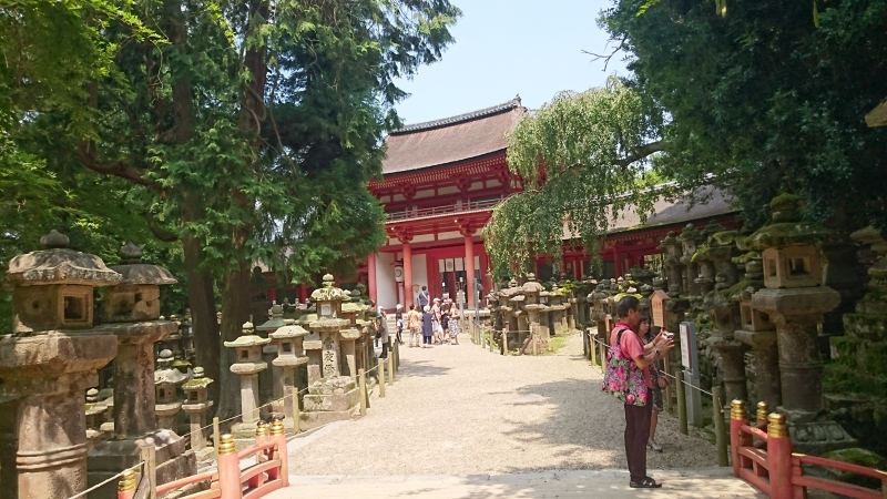 Kasuga shrine was founded in 8th century by Fujiwara family to worship the diety to guard the family.The approaches to the shrine are lined with hundreds of lanterns and there many more in the shrine itself.