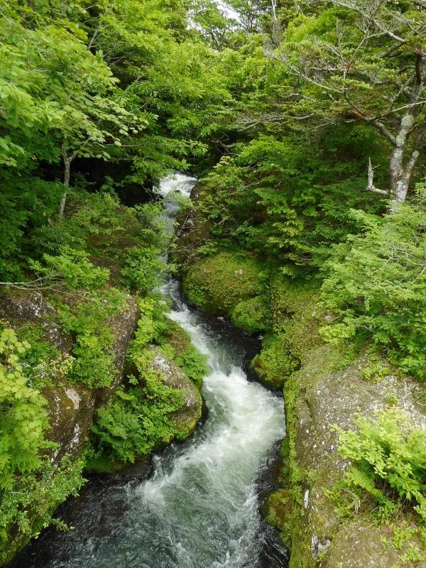 The Ryuzu Falls