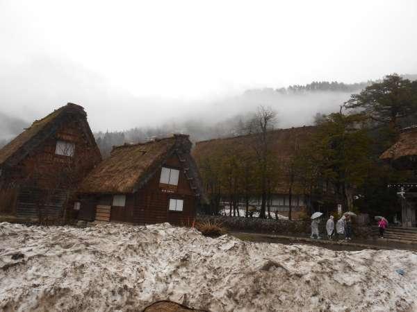 Shirakawago Gassho farmhouses with snow.