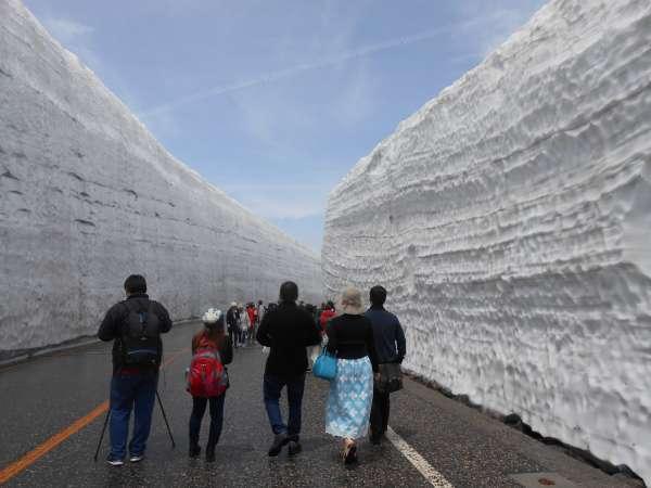 Big snow wall.