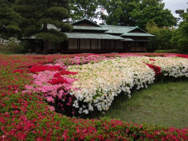 Tea house in spring at the Imperial Palace East Garden