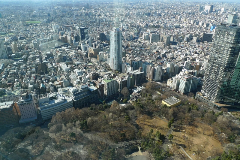 Bird view from the observatory floor at the Shinjuku city hall building