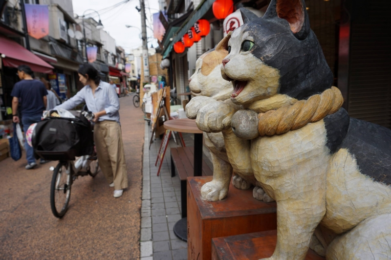 Yanaka Ginza, a main street in Yanaka, frequented by locals for dayly groceries
