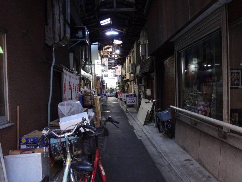 Small and quiet during daytime, but busily visited at night bar street in Yanaka