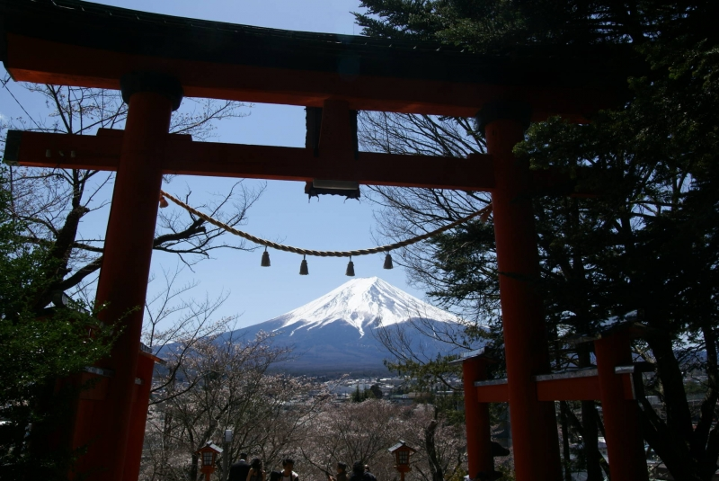 Torii gate and the Mt.Fuji