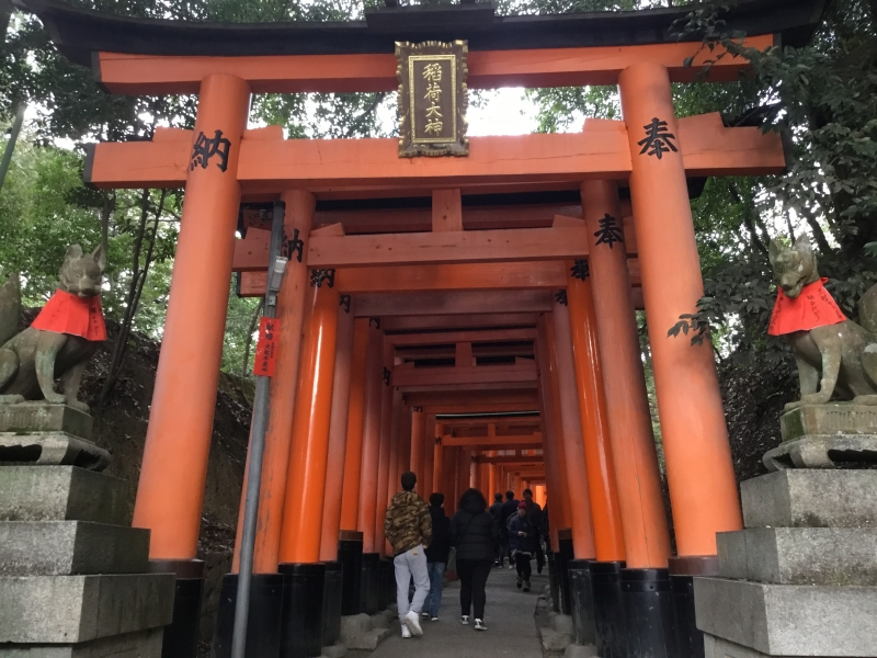 In Fushimi-inari shrine, there are up to 5,000 Torii gates in this precincts