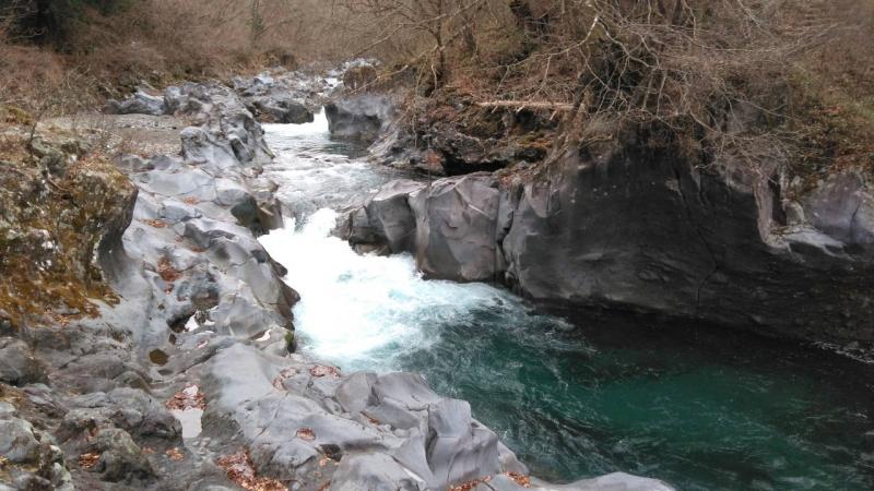 a short nature walk along Daiya river adds a refreshing air to your brain