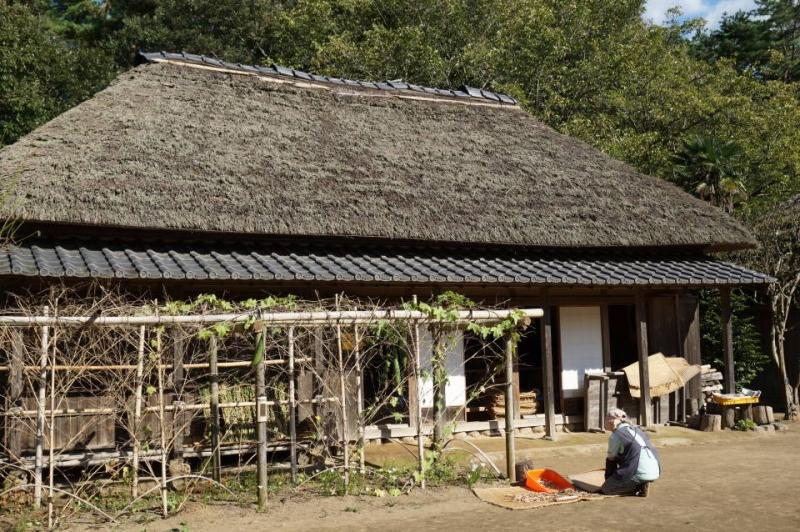 A farming experience at a typical Japanese farmhouse