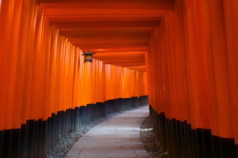 Fushimi Inari shrine torri gates