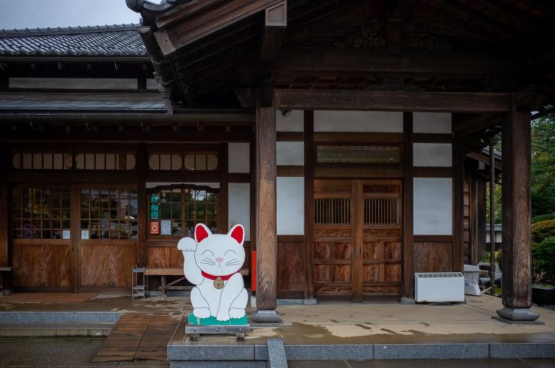(C) Gotoku-ji temple - said to be the origin temple of Maneki-neko (lucky cat)