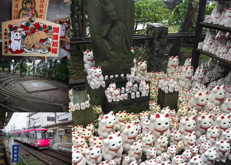 (C) Gotoku-ji temple - lots of cat dolls in temple. Nearby shrine has Sumo wrestling ring inside precinct.